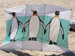 Pinguins postcard
