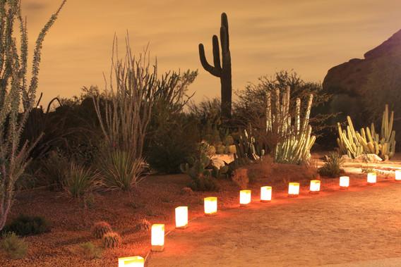 luminarias and saguaro silhouette.jpg