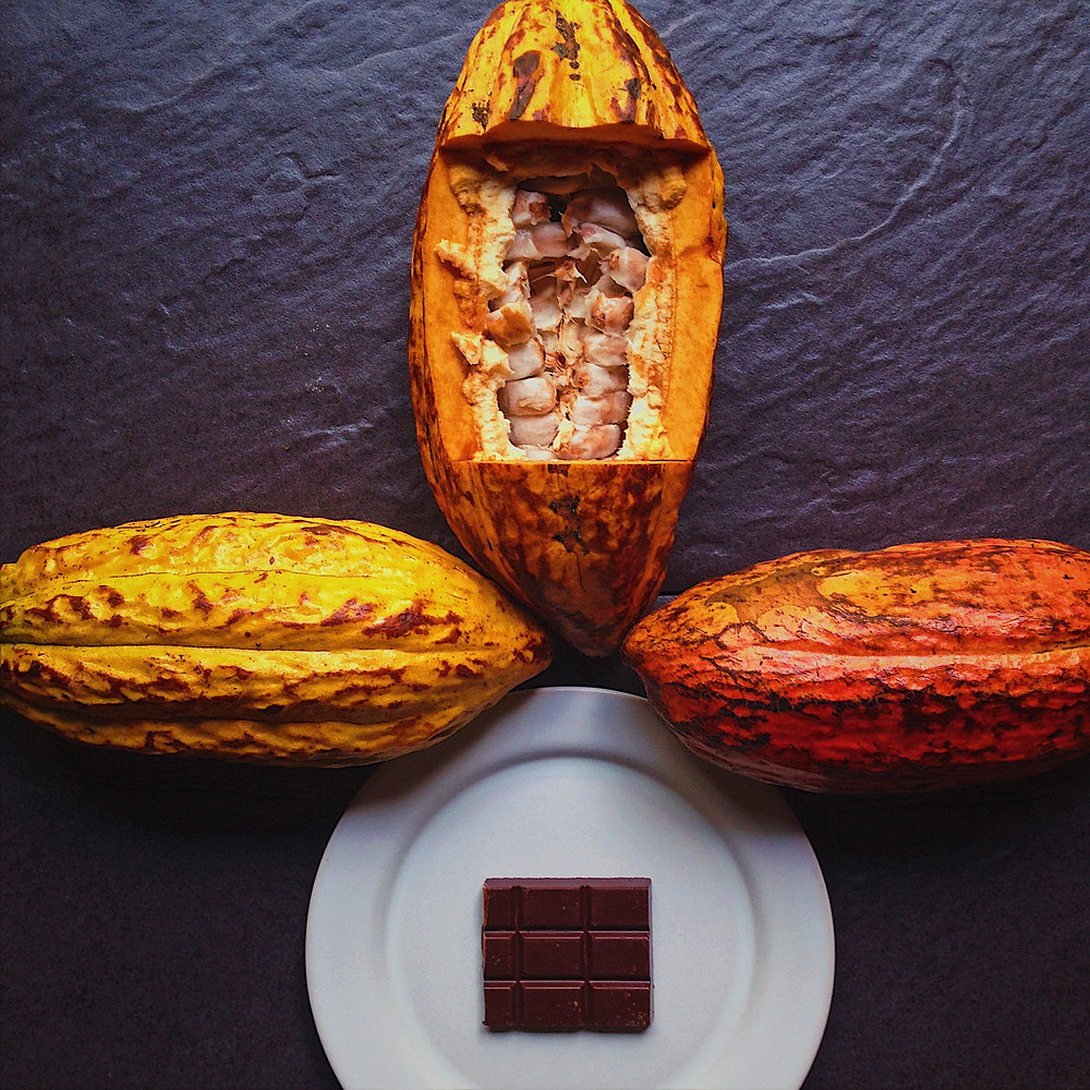 Cacao pods and chocolate bar