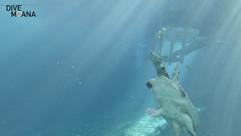 Blue Grotto Sidemount Course