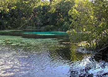 Ocala-National-Forest-Alexander-Springs-
