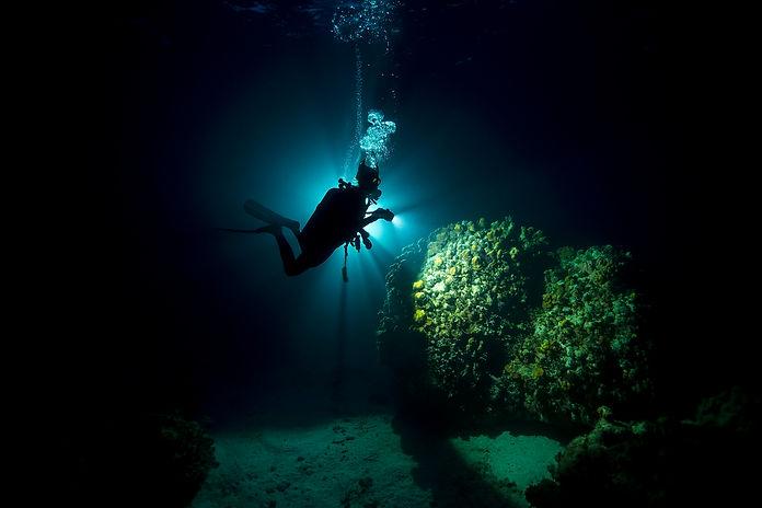 Padi-GrandCayman-03-2018-underwater-3196