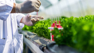 Business Concept Training Alumn AgroSustain closes CHF 4.8 million Series A round