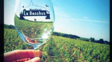 A propos de La Bacchus