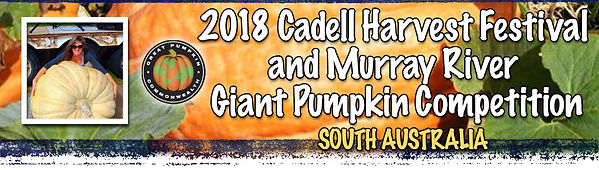 cadell-pumpkin-banner.jpg