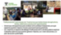 2019-05-02 16_16_57-Experiencias Coachin