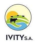 logo ivity.jpg