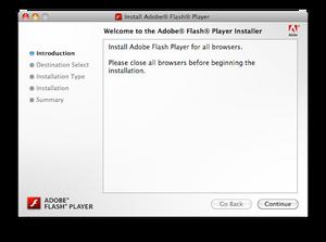 flash_installer_2