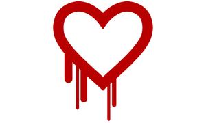 Heartbleed-l