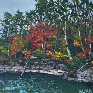 """Fall at Little Dismal Creek"""