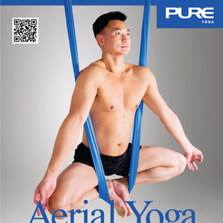 Aerial Yoga - Workshop - January 2015 -
