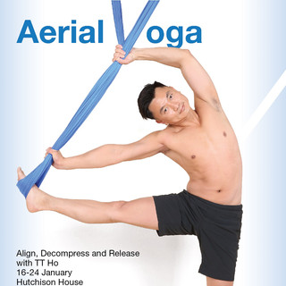 Aerial Yoga - Workshop - January 2016 -