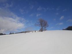 Panský vrch