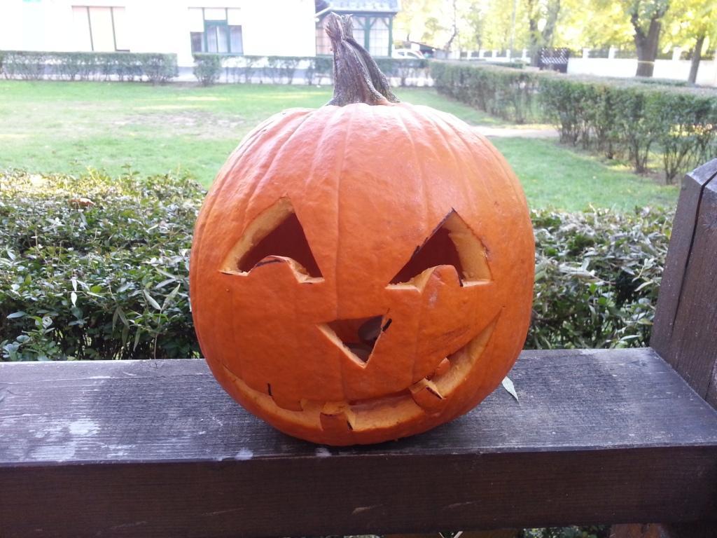 halloween (25)