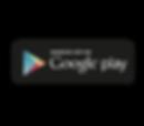 logo google store_Tavola disegno 1.png