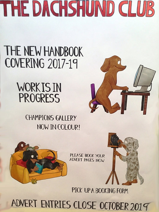handbook advert 2017 2019.jpg