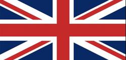 flag 3.jpg