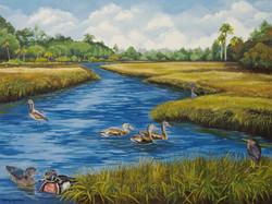 DSC_1848-Ducks on Pond