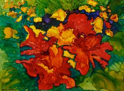 DSC_1850-Blooming Orange