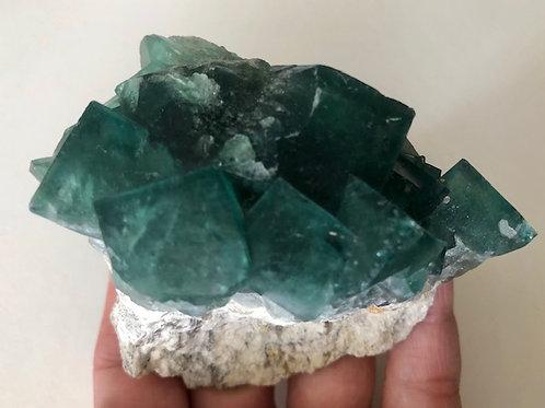 Stunning Green Cubes Fluorite cluster