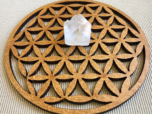 Flower of Life Wooden Mandala with Apophyllite Point