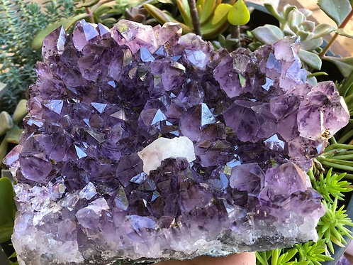 Amethyst bed with Calcite