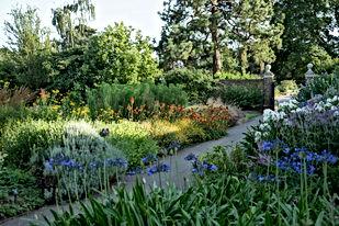 Duke's Garden in Summer (1) credit RBG K