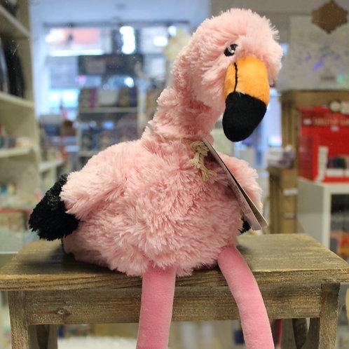 Flamingo, Warmie