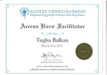 Access Bars Eğitimi