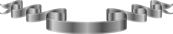 silver_PNG17133.png