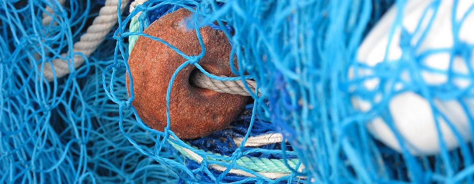 fishing-net-557249.jpg