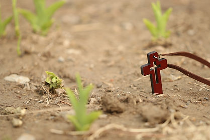 planted cross-1400020.jpg