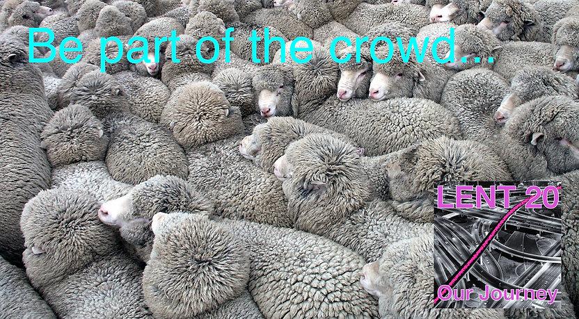 LENT 20 10 March 20 - sheep.jpg