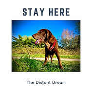 Stay Here The Distant Dream.JPG