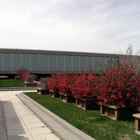gallery-image-weber-state-university-ogd