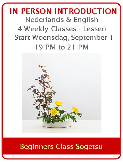 Beginners' Class Sogetsu Curriculum