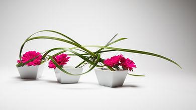 Freestyle ikebana arrangement