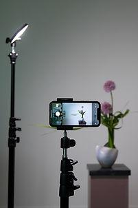 Ikebana Photography with Smartphone