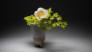 Free style Ikebana Arrangement