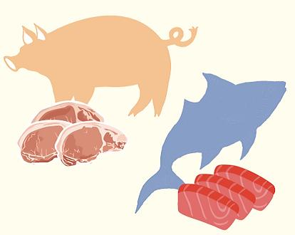 ビタミンB群は 豚肉・マグロ など