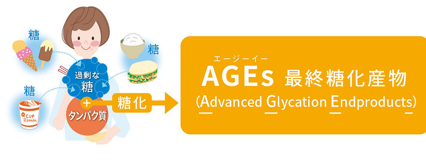 AGEsのイメージ