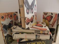 Nabokov Slip Case Set