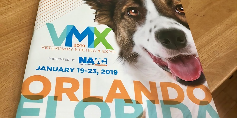 VMX 2019: Acupuncture to Enhance Your Practice and Patient Care