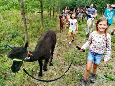 Op vriendenweekend in de Vlaamse Ardennen