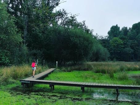 Bulskampveld, heerlijke groene long rond Brugge