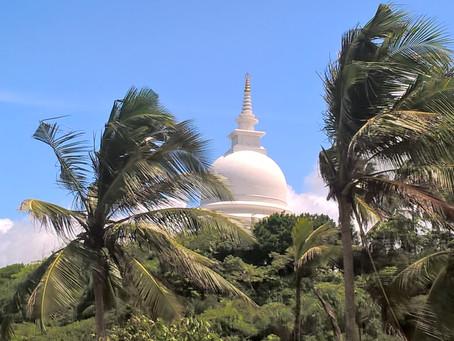 Drie weken prachtig Sri Lanka met openbaar vervoer – onze reisroute