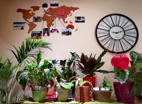 Pimp je woonkamer met een wereldkaart van kurk