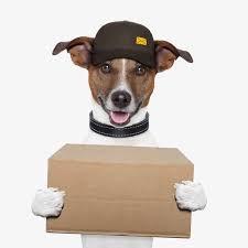 Prescription and Food Delivery