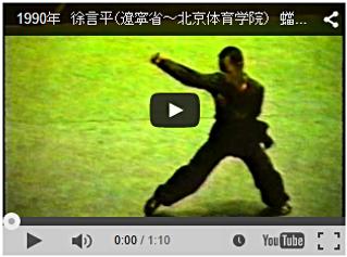 蟷螂拳 中国武術 カンフー