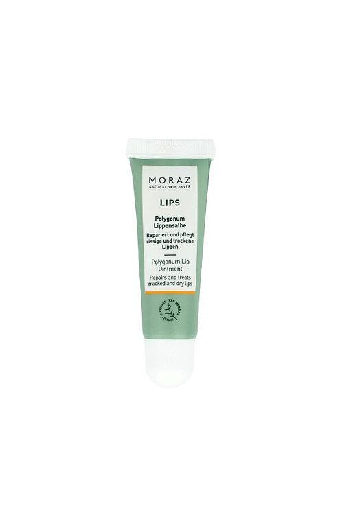 唇膚靈 Polygonum Dry Lips Ointment